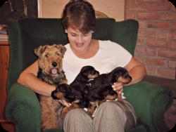Newborn puppy photosm