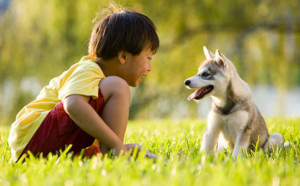 kids-and-pet-300x186
