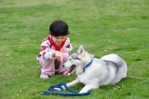 kid dog lawn