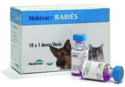 What is the Rabies Challenge Fund?