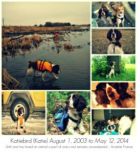 Katiebird Collage1