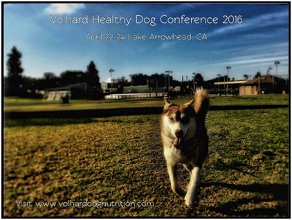Volhard Healthy Dog Conference April 22-24