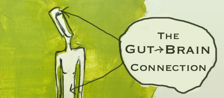 The Brain – Gut Connection